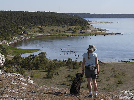 Gotlands Naturreservat Länsstyrelsen